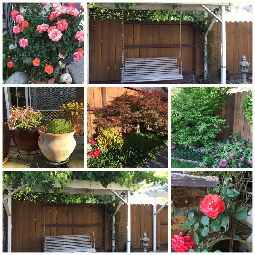 Garden pics Collage
